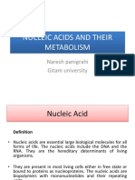 Nucleic Acids and Their Metabolism