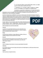 rubrica-evaluacion-escritos