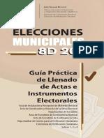 Guia_practica_llenado.pdf