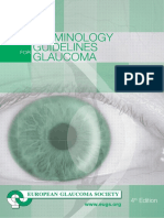 Terminology and Guidelines in Glaucoma.pdf