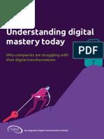 Digital Mastery DTI Report_20180704_web