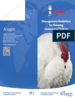 Guidelines for Growing commercial Turkey