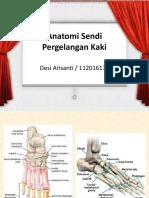 Anatomi Sendi Pergelangan Kaki