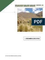 Resumen Ejecutivo PIP Riego Chuima.pdf