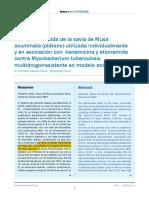 Efecto Bactericida de La Savia de Musa Acuminata (Plátano) Utilizada Individualmente y en Asociación Con Kanamicina y Etionamida Contra Mycobacterium Tuberculosis
