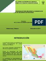 Bloques Multinutricionales - 2