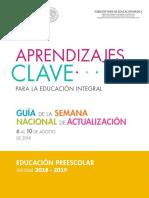 PREESCOLAR GUIA.pdf