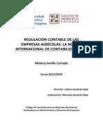 contabilidad-TFG.pdf