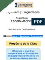 PROGRAMACION I 1Algoritmos y Programacion