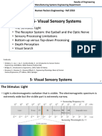 IE464 T5 Visual Sensory Systems