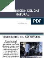 distribucindelgasnatural.pdf