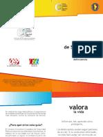 MANUAL DE SEGURIDAD SSPE NL 6[1].0compag-num.pdf
