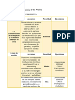 Plan de Accion.docx Final.docx 2
