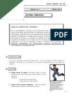 III Bim - 3er. año - Guía 1 - Sistema nervioso.doc
