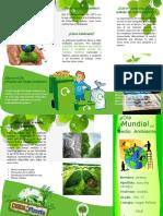 Triptico Del Dia Mundial Del Medio Ambiente