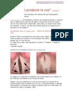 Cómo se produce la voz.pdf