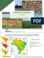 Adubacao de pastagens.pdf