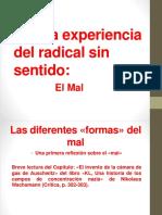 1.3. La Experiencia Del Radical Sin Sentido.