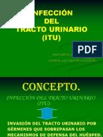 infeccion-urinaria-.ppt