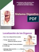 Aparato Digestivo Anatomía.pdf
