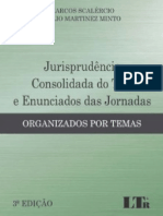 Jurisprudência Consolidada Do TST e Enunciados Das Jornadas (2017) - Marcos Scalércio e Tulio Martinez Minto