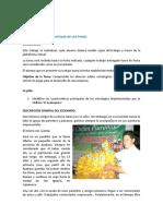 Análisis Estructural de Las MYPEs y PYMEs