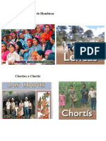 Grupos Étnicos de Hondura1