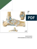 Sobre o tornozelo - Fisioterapia