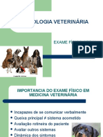 examefisicogeral-120915220015-phpapp02