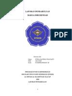 LAPORAN PENDAHULUAN HDRR.doc