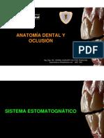2º Clase Anatomía Dental y Oclusión
