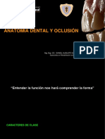 3ª clase anatomía dental.pptx