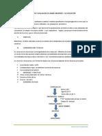Elaboración y evaluación de jarabe invertido y su aplicación