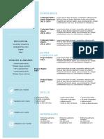 curriculum viate template.doc