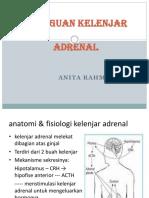 Addisons disease 2.pptx