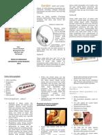 250468164-LEAFLET-KANKER-PAYUDARA-pdf.pdf