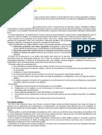 6 - Leonardi - Infodesign