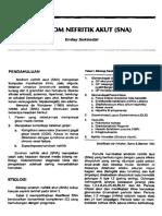 278393958-5-SINDROM-NEFRITIK-AKUT-pdf.pdf