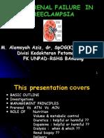 Renal Failure in Pregnancy.dr Alam