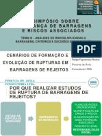 Cenários de Formação e Evolução de Rupturas Em Barragens de Rejeito