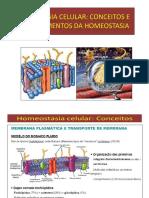 Homeostasia Celular Potenciais