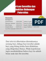 PPT pleno blok IV.pptx