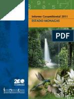 Informe Geoambiental Monagas