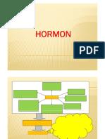 Hormon OK.pdf