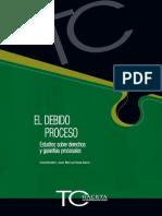 el-debido-proceso.pdf