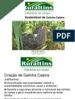 Princípios Básicos de Produção Sustentável de Galinha Caipira