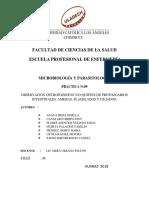 guia-de-practica-n.9-parasitos.pdf