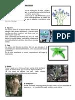 Claseas de Ecosistemas