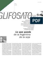 GLIFOSATO.pdf