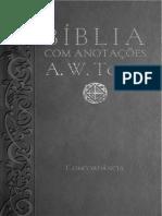 Biblia Com Anotacoes a.W.tozer